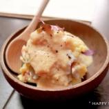 『ジョウゾウカ オリゼーで発酵食品を食べる!』の画像