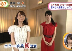 佐々木希の顔が小さすぎる!トリンドルより二回りくらい小さい!