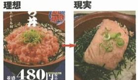 【画像】  日本人が作る 「理想と現実」の画像が センスありすぎるwwwwwwwww   海外の反応