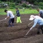 熊本「今度は農作業の人手が足りないんです。ボランティア来て下さい!!」