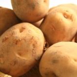 『ジャガイモの「ジャガ」って何?』の画像