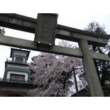 『(石川)満開の桜にまた出逢う』の画像