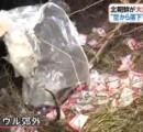 北朝鮮の中傷ビラ、誤作動で30kgの塊で韓国に落下相次ぐ