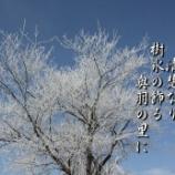 『青に白』の画像