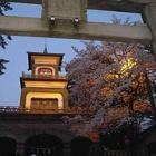 『祝 北陸新幹線 金沢開業 金澤は城下町です。』の画像