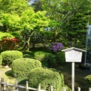 石川・富山・岐阜の旅⑥ 日本最古の噴水