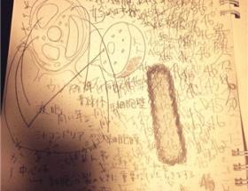 関東高1ミスコンのファイナリスト、今井玲奈さんのノートが怖すぎる