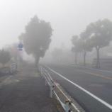 『ニャン太の説明で霧が晴れる!!・・・・・・かも』の画像
