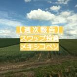 『【メキシコペソ 週次報告】コツコツスワップ投資!』の画像