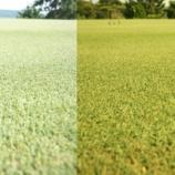 『今までにないゴルフを体感!! 芝目に自信ありゴルフ向けメガネレンズ『Eagle View(イーグルビュー)』』の画像