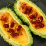 『ゴーヤは全部食べれます(^^) 綿も、種も、赤くても、黄色くても ゴーヤ料理』の画像
