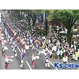 『原宿表参道元氣祭スーパーよさこい2008が開催されました。』の画像