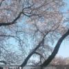 【文春】乃木坂46能條愛未と仮面ライダー俳優戸谷公人が匂わせていた画像wwwwwwwwwwww