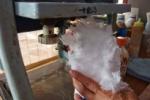 たこ焼き屋の『中角』のかき氷が美味い!~枚方凍氷さんの氷を使ってるからふわっふわ~