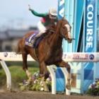 『【浦和記念】ケイティブレイブが3馬身差V! 復帰初戦を勝利で飾る』の画像