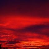 『都民だが東京の朝の空が赤くてビビってる』の画像