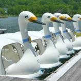 『白鳥ボートだけど、楽しい♪』の画像