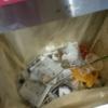 【悲報】握手会後の海浜幕張駅のゴミ箱wwwwwwwww