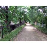 『笹目の遊歩道』の画像