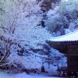 『雪の松島』の画像