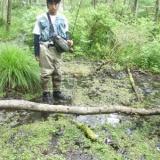 2009.06.09(火)信濃川上・黒沢川の写真