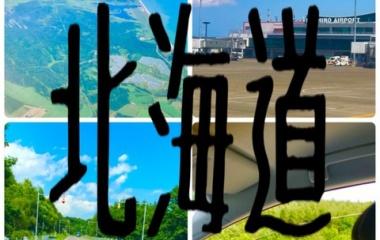 『[プロローグ]北海道旅行 釧路へ① peachで飛んできました!』の画像