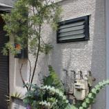 『 戸田市内カフェリポート(第1回) まめしばコーヒー オープンしました(戸田市上戸田2-36-5 2F)』の画像