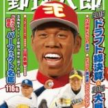 『野球太郎ドラフト決算号の表紙www』の画像