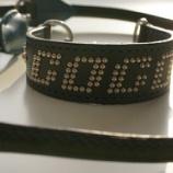 『ラブラドゥードゥルちゃんご注文のオリジナル首輪の仕上がりをご覧ください!』の画像