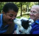 「世界一賢い犬」が死亡