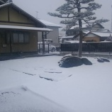 『大映ミシン付近は大雪です・・・明日の朝は雪かきスタート確定っぽいですね!!!』の画像