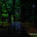 『雨の見晴公園Rain of Miharashi Park.』の画像