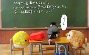 桜文鳥さん「算数がんばる」
