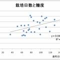 (後編)野菜中身評価 「ホウレンソウ」 -データから見た野菜の機能性-