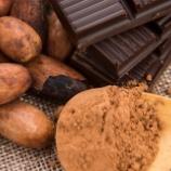 『チョコレートが持つ意外な効能 もうおやつを我慢しなくて大丈夫かも!』の画像