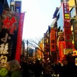 『桜咲く横浜の街をブラついて来る』の画像