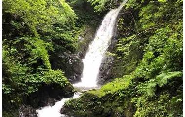 『滝のように激しく、恵みと癒しを注いでくださる父なる神だから。』の画像