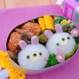 『おうち弁当の勧め・うさぎちゃんのキャラ弁』の画像