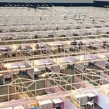『【香港最新情報】「中央のコロナ対策支援隊が2日に到着」』の画像