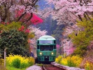 韓国人「ため息が出るほど美しい日本の写真を見てみよう」