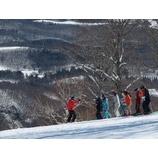 『今日も青空広がる雫石。昨夜の最低気温は0度。朝から雪が緩んでいます。』の画像