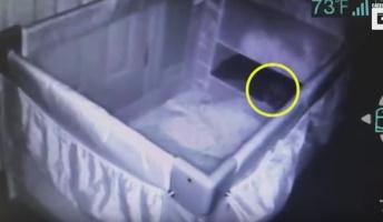 【心霊映像】流産した赤ちゃんの霊を捉えたカメラ映像が流出