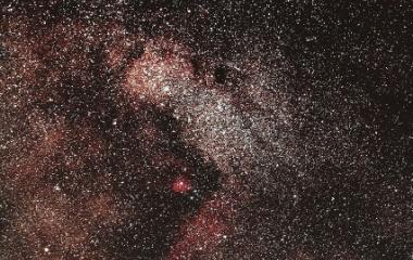 『シグマ150mmF2.8によるバンビの見上げるオメガ星雲』の画像