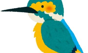鳥さんは眼球を動かせないから頭を動かす話