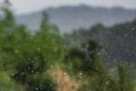 晴れの反対は雨な交野の街  ~交野さんぽ57~