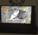 【画像】 沖縄では寒すぎて魚が気絶して浮いてきている。冗談のようだが、本当だ。