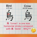 外国人「烏と鳥という漢字が違う理由がかなり興味深い!」