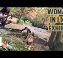 女、ライオンの囲いに入ってダンス ライオン驚く 女とライオンにけがなし 不法侵入容疑で逮捕