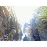 『滝を登る』の画像