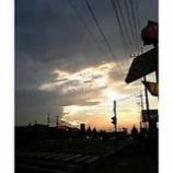 『真夏の熱射うけて』の画像